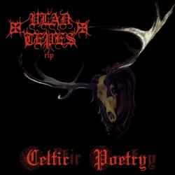 VLAD TEPES - Celtic Poetry - CD