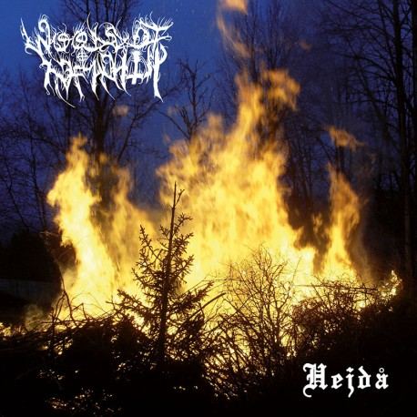 WOODS OF INFINITY - Hejdå - CD